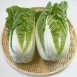 白菜で美味しく節約しよう!おすすめ白菜アレンジレシピ30選