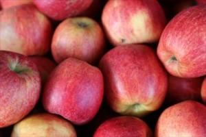 ふるさと納税人気特産品は果物!りんご5キロがもらえるって本当?apple-242555_1280_R