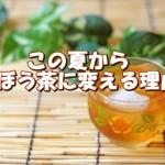 飲みたくなるごぼう茶の10の効能と作り方!