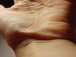hand-503651_1280_R