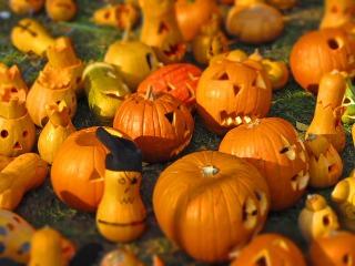 s_pumpkin-562409_640