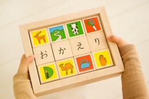 http://shop.greenshop.co.jp/i-shop/product.asp?cm_id=295091