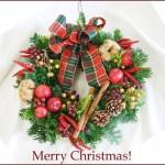 ナチュラルなクリスマスリースの材料☆自然素材で本格リース作り!