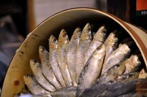サバ、マグロ、いわし、さんまなどの背の青い魚は缶詰で安く摂取salting-241052_1280_R