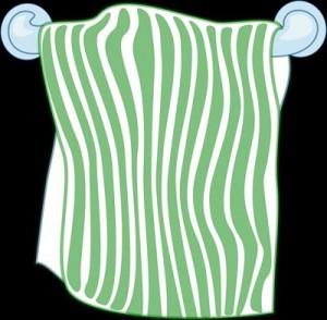 14体を洗うタオルを半分にカットしてtowel-304192_1280_R