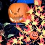 大人が楽しむハロウィン仮装はプチ手作りがおすすめ!