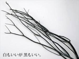 出典http://item.rakuten.co.jp/cotta/75-10334-204/